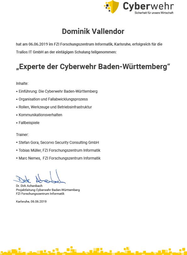 Urkunde Cyberwehr Dominik Vallendor